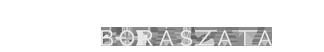 Riczu Tamás logo